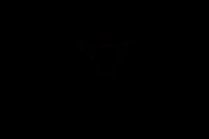 Vigna dei Cardinali-ricevimenti-black